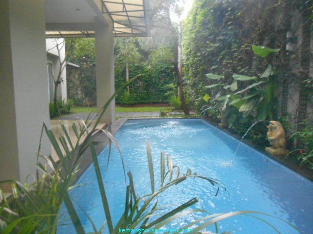 Compound To Rent Kemang Area